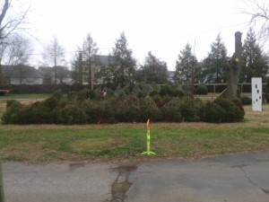 snow flurries at Simonson Farms 12-21-12